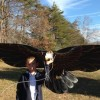 George, the American Eagle flies