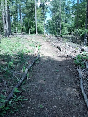 Lining the finished trail. It looks great!